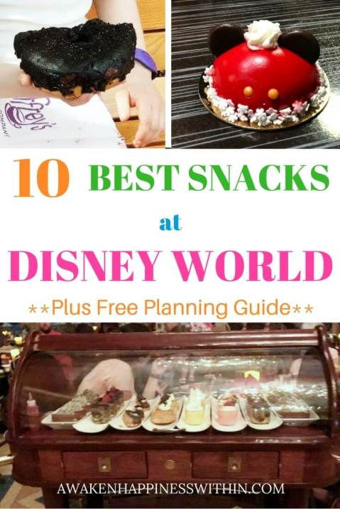 Best Snacks at Disney World