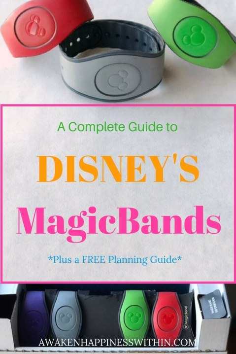 Everything you need to know about Disney World's MagicBands.