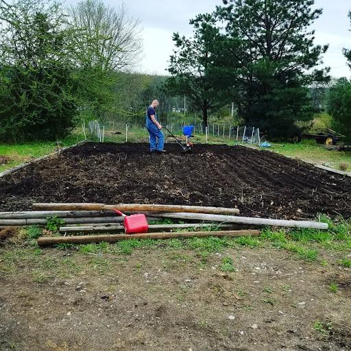 garden beginings