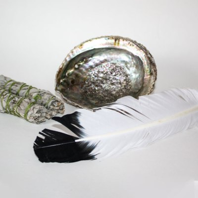 Abalone shell, imitation eagle feather and white sage to smudge your home.