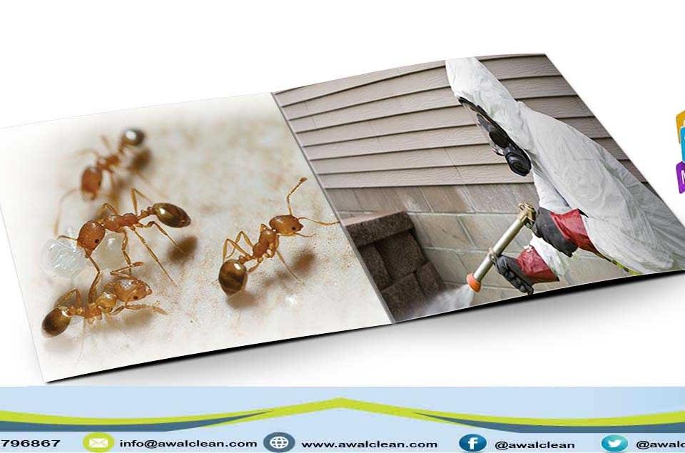 عامل يرش مبيد حشرات