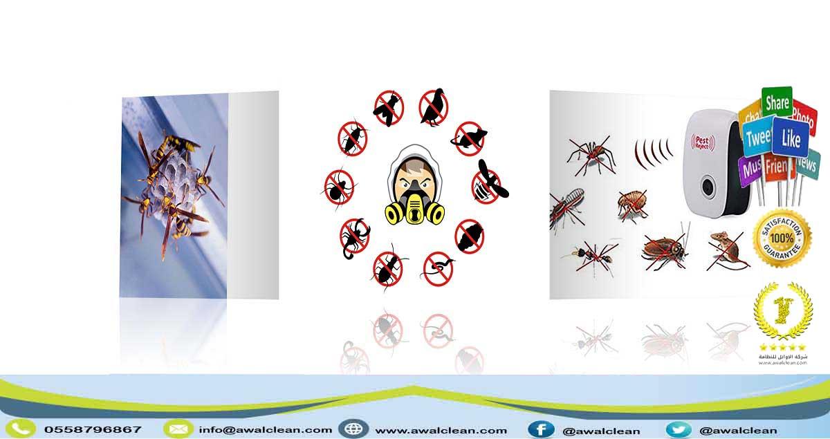 مجموعة حشرات مزعجة