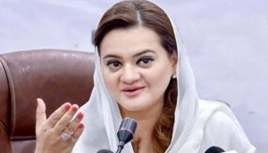 People are asking questions on the investigation of the plane crash but the Prime Minister is missing: Maryam Aurangzeb  طیارہ حادثہ کی تحقیقات پر عوام سوال پوچھ رہے ہیں لیکن وزیر اعظم لاپتہ :مریم اورنگزیب 17 1 300x171