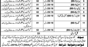latest jobs in pakpattan 2017