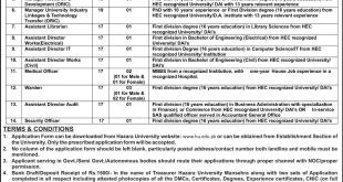 jobs in Hazara University Mansehra Jobs