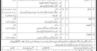 PO Box 769 GPO Rawalpindi Jobs