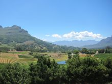 Wine Country, Cape Town