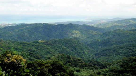 Your hike is rewarded with a view from Yokahu Tower.