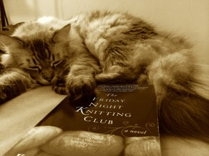 The Friday Night Knitting Club By Kate Jacobs A Wandering Reader