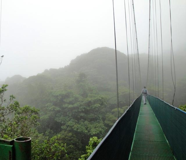 MonteverdeSkyWalk2