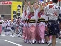阿呆連ー南越谷阿波踊り2014