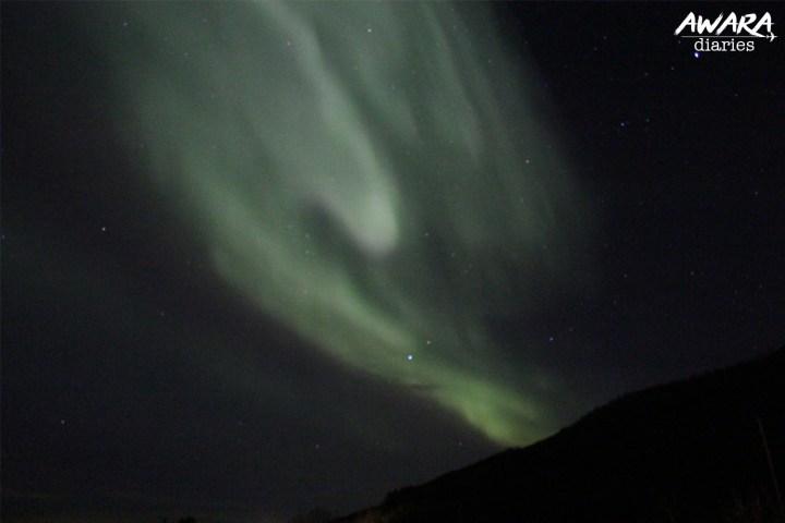 Northern Lights Night 2