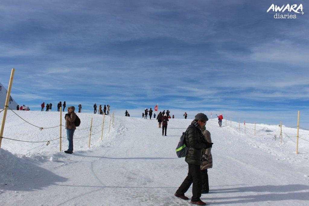 Jungfraujoch Top view 5