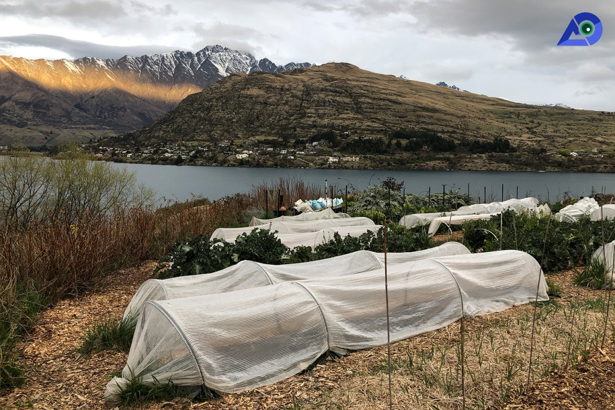 Organic Farming Queenstown