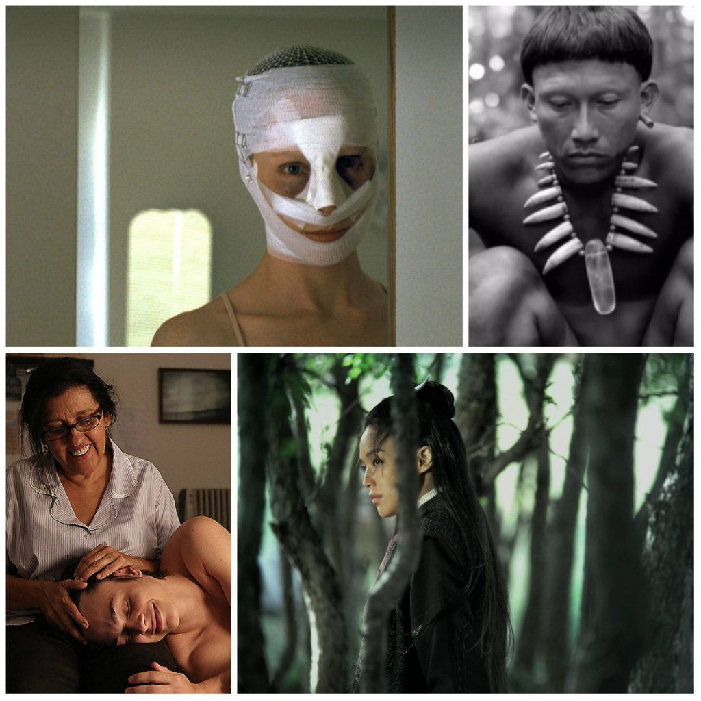 Top; Austria's Goodnight Mommy, Colombia's Embrace the Serpent. Bottom; Brazil's The Second Mother, Taiwan's The Assassin