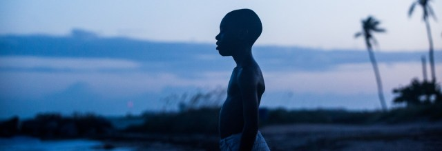 Moonlight was the big winner with LA Film Critics, taking Best Picture, Director, Supporting Actor and Cinematography