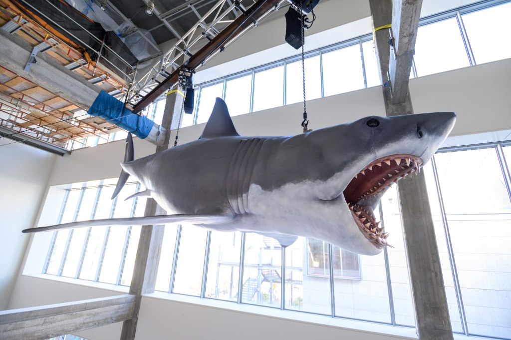 Academy Museum, Bruce, Jaws, Install