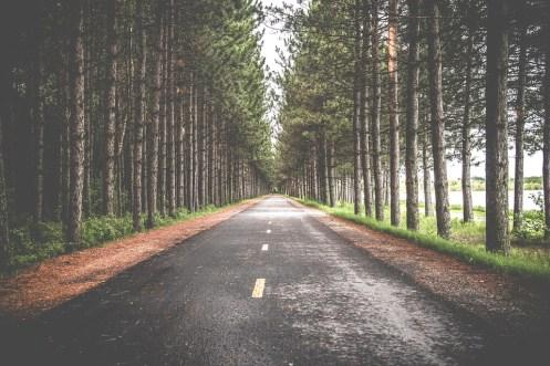 road-690138_960_720