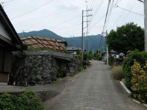 筑波山を見上げる