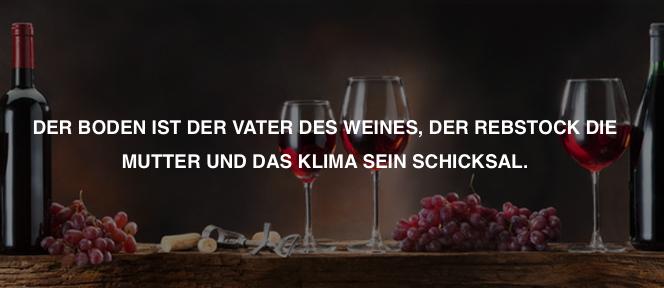 firmenwebseite-weinhandel-anja-wiessmann