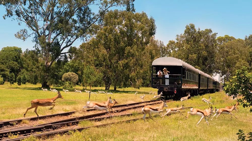 train rovos 1 - 6 Railway journeys to blow your mind