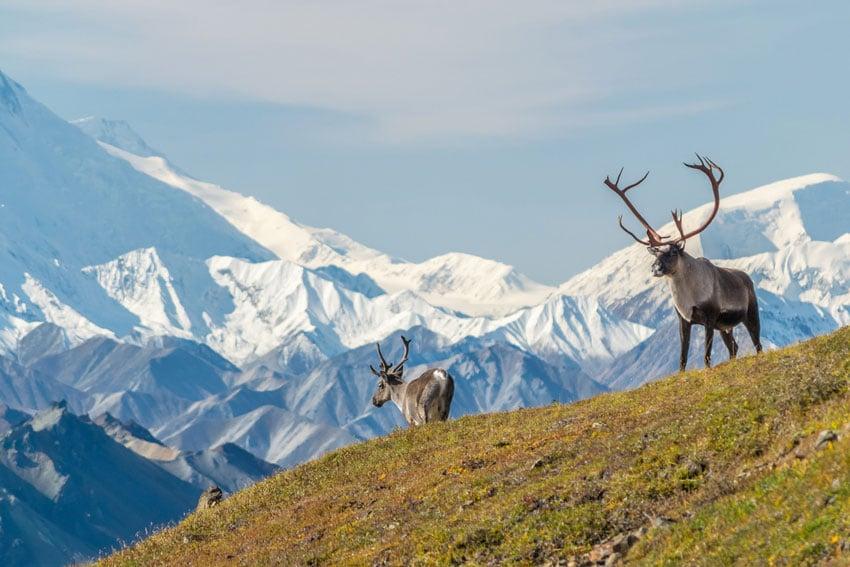 Top 3 Ecotourism Places to Visit