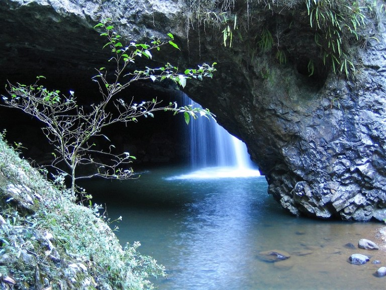 Daytrips Brisbane_Springbrook Natural Bridge