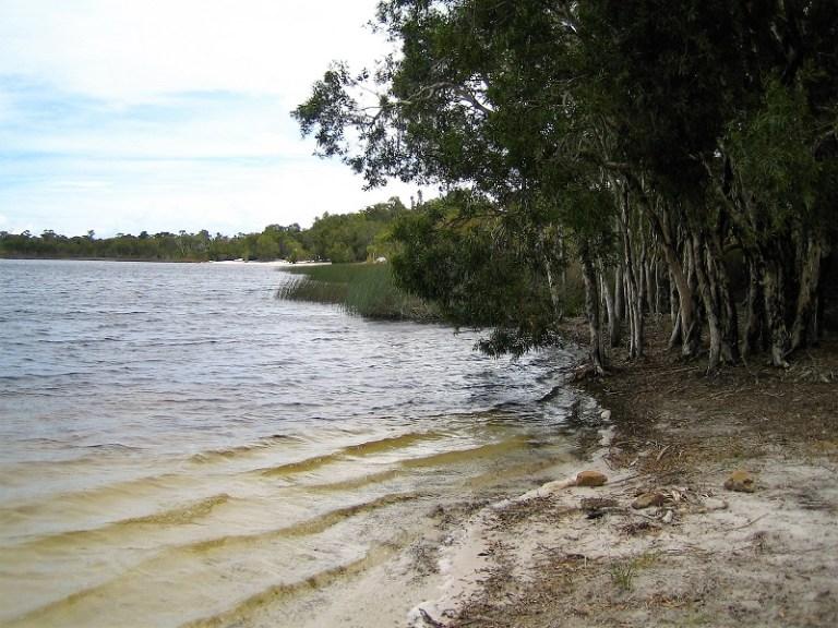 Daytrips Brisbane_Brown Lake North Stradbroke Island