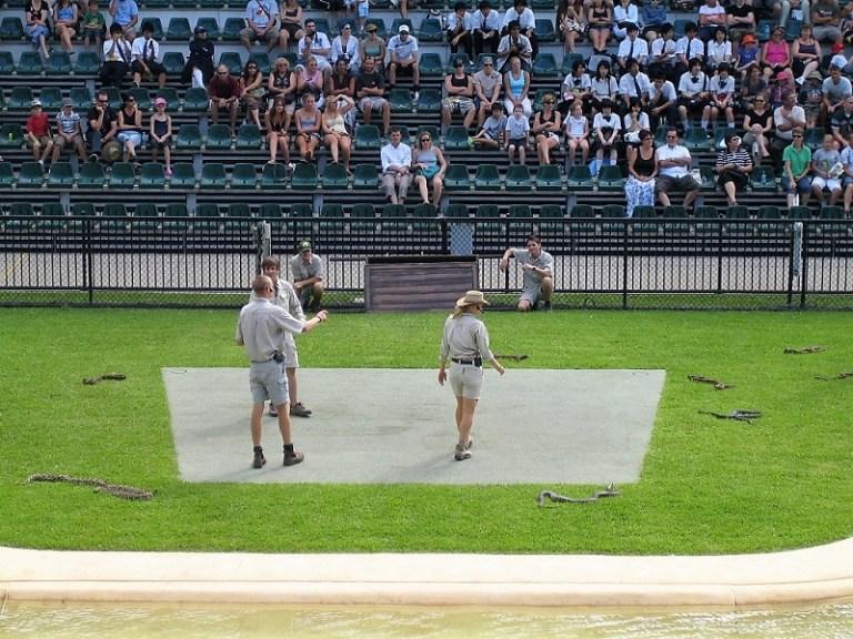 Daytrips Brisbane_Schlangenshow Australia Zoo