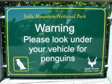 Kapstadt Highlights_Boulders Beach Schild