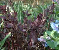 and the hits… (part 2)