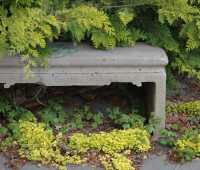 i've got sunshine (on a cloudy day)