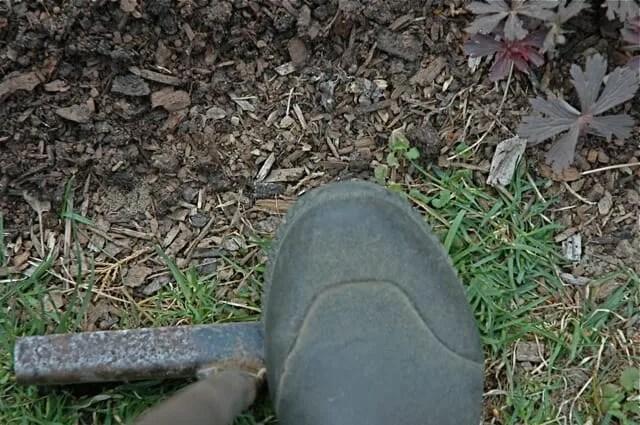 edger-foot