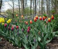 think fall (yes, fall): part 2