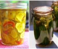 dan koshansky's refrigerator dill pickles