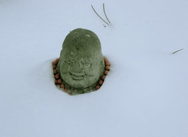 snowbuddha