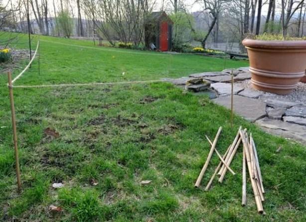 lawn-repairs