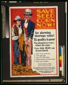 corn-1917