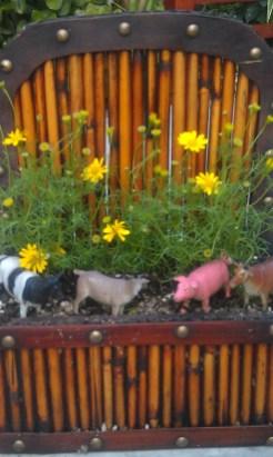 miniature-garden-1-0d837eb354921ca46e9cfacacea52edb42cfb814