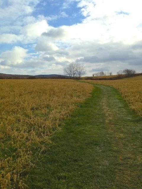 roeliff-jansen park, hillsdale and copake, new york