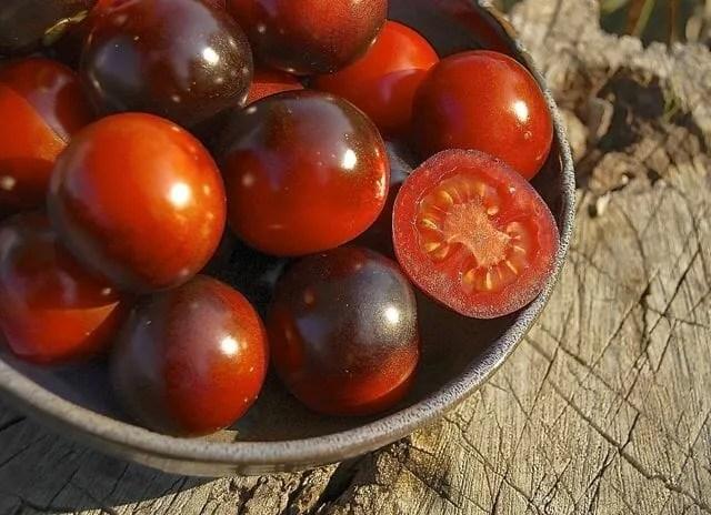 Indigo Rose tomato