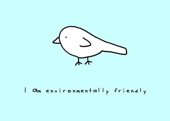 bird-copyright-andre-jordan