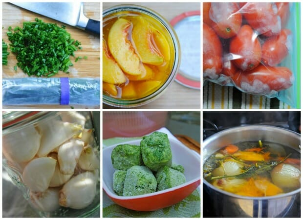 freezing herbs and vegetables