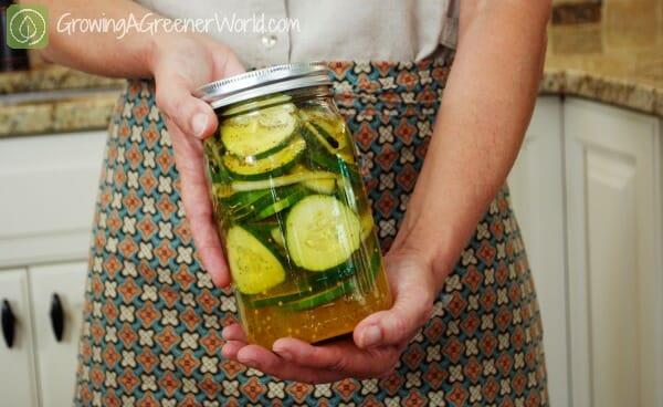 Theresa Loe's refrigerator pickles
