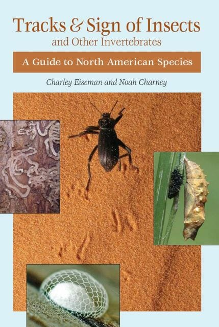 """Tracks and Sign of Insects"" book cover"