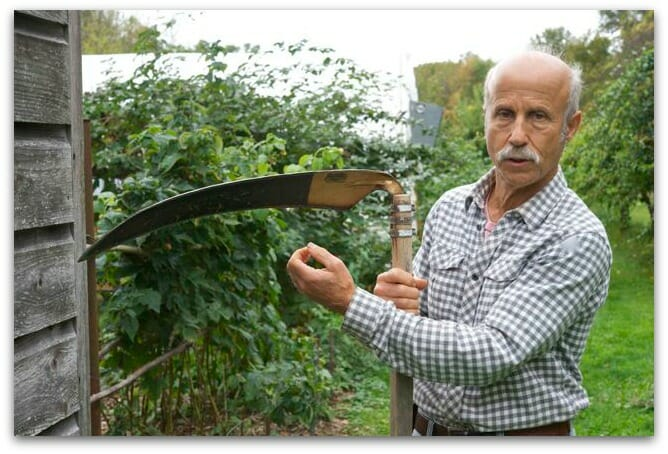 "Lee Reich at his New Paltz ""farmden"" with his scythe"