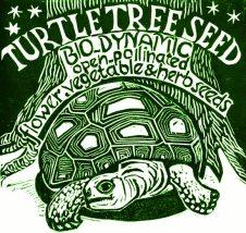 Turtle Tree Seed logo