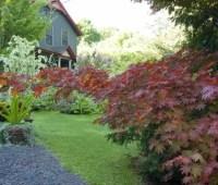 september open garden tour: a giant botanical birdfeeder