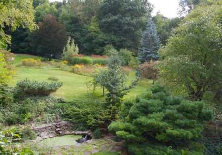 Take a right turn at the top of the walkway, and the small backyard, with frogpond, reveals itself -- with a steep, looser field that includes little bluestem, asters and goldenrod above it.