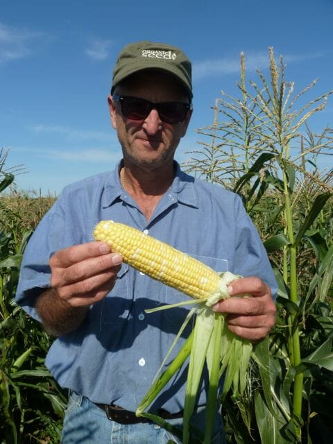 bill-corn